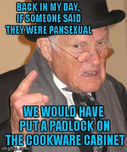 At His Age, He's A Why-Sexual... | BACK IN MY DAY, IF SOMEONE SAID THEY WERE PANSEXUAL WE WOULD HAVE PUT A PADLOCK ON THE COOKWARE CABINET | image tagged in memes,back in my day | made w/ Imgflip meme maker
