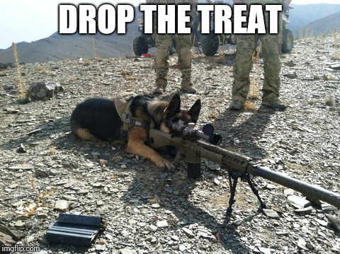 DROP THE TREAT | made w/ Imgflip meme maker