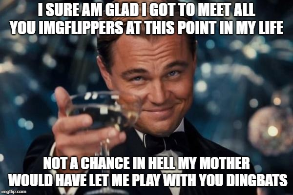 nice to meet you all | I SURE AM GLAD I GOT TO MEET ALL YOU IMGFLIPPERS AT THIS POINT IN MY LIFE NOT A CHANCE IN HELL MY MOTHER WOULD HAVE LET ME PLAY WITH YOU DIN | image tagged in memes,leonardo dicaprio cheers | made w/ Imgflip meme maker