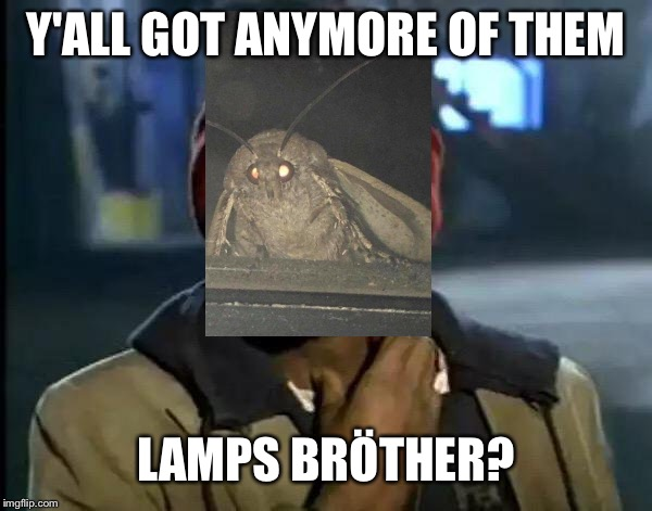 Y'all Got Any More Of That Meme | Y'ALL GOT ANYMORE OF THEM LAMPS BRÖTHER? | image tagged in memes,y'all got any more of that,moth,lamp,i love lamp,moths | made w/ Imgflip meme maker