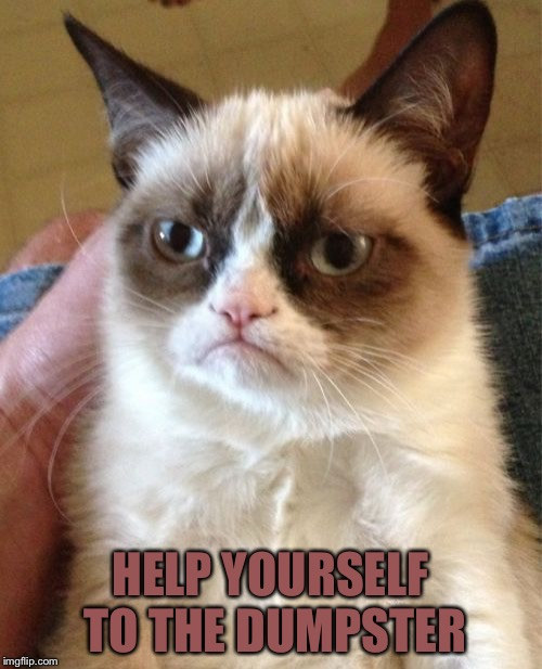 Grumpy Cat Meme | HELP YOURSELF TO THE DUMPSTER | image tagged in memes,grumpy cat | made w/ Imgflip meme maker