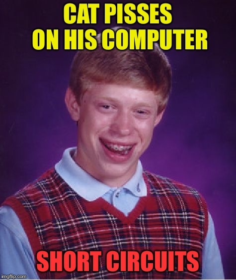 Bad Luck Brian Meme | CAT PISSES ON HIS COMPUTER SHORT CIRCUITS | image tagged in memes,bad luck brian | made w/ Imgflip meme maker