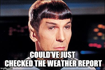 Condescending Spock | COULD'VE JUST CHECKED THE WEATHER REPORT | image tagged in condescending spock | made w/ Imgflip meme maker
