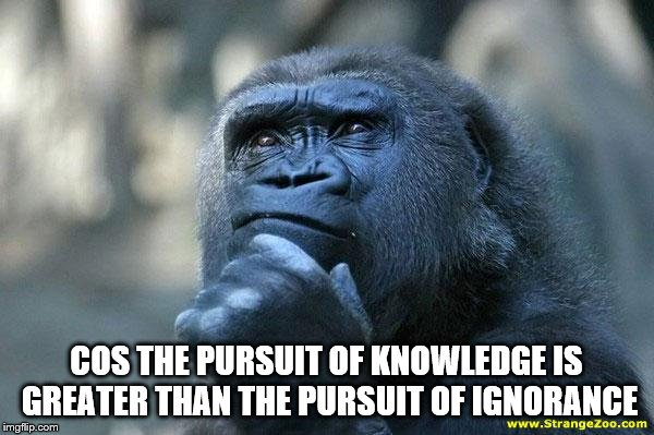 Deep Thoughts | COS THE PURSUIT OF KNOWLEDGE IS GREATER THAN THE PURSUIT OF IGNORANCE | image tagged in deep thoughts | made w/ Imgflip meme maker
