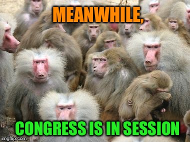 MEANWHILE, CONGRESS IS IN SESSION | made w/ Imgflip meme maker