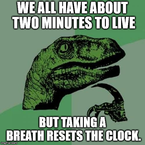 Philosoraptor | WE ALL HAVE ABOUT TWO MINUTES TO LIVE BUT TAKING A BREATH RESETS THE CLOCK. | image tagged in memes,philosoraptor | made w/ Imgflip meme maker