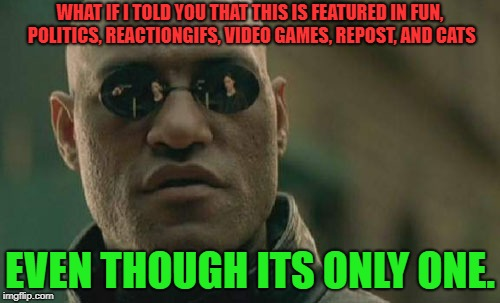 Should've made it NSFW to really screw around with those moderators. |  WHAT IF I TOLD YOU THAT THIS IS FEATURED IN FUN, POLITICS, REACTIONGIFS, VIDEO GAMES, REPOST, AND CATS; EVEN THOUGH ITS ONLY ONE. | image tagged in memes,matrix morpheus,fun,politics,reactiongifs,video games | made w/ Imgflip meme maker