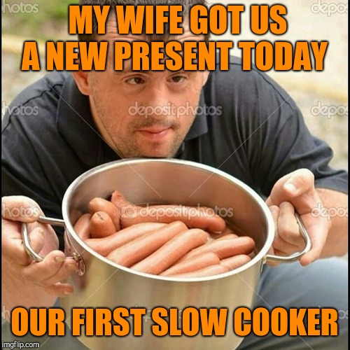 Hot downy dogs | MY WIFE GOT US A NEW PRESENT TODAY OUR FIRST SLOW COOKER | image tagged in hot downy dogs | made w/ Imgflip meme maker
