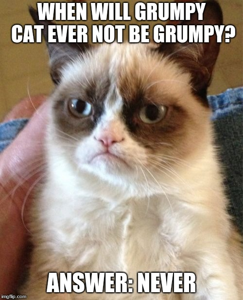 Grumpy Cat | WHEN WILL GRUMPY CAT EVER NOT BE GRUMPY? ANSWER: NEVER | image tagged in memes,grumpy cat | made w/ Imgflip meme maker