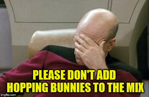 Captain Picard Facepalm Meme | PLEASE DON'T ADD HOPPING BUNNIES TO THE MIX | image tagged in memes,captain picard facepalm | made w/ Imgflip meme maker