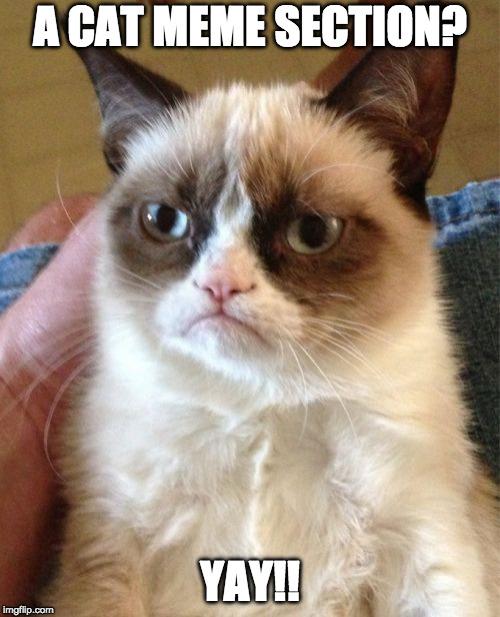 Grumpy Cat Is Being Sarcastic Imgflip