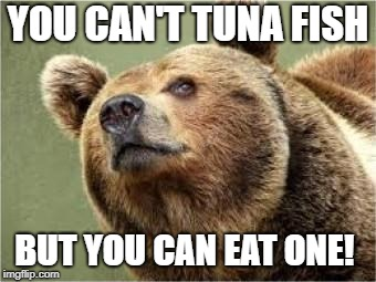 Smug Bear Meme |  YOU CAN'T TUNA FISH; BUT YOU CAN EAT ONE! | image tagged in memes,smug bear | made w/ Imgflip meme maker