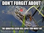 DON'T FORGET ABOUT THE QUARTER SIZED KILL SPOT YOU MUST HIT | made w/ Imgflip meme maker