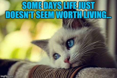 :/  | SOME DAYS LIFE JUST DOESN'T SEEM WORTH LIVING... | image tagged in memes,first world problems cat,jbmemegeek,life sucks,unfair universe,depression | made w/ Imgflip meme maker