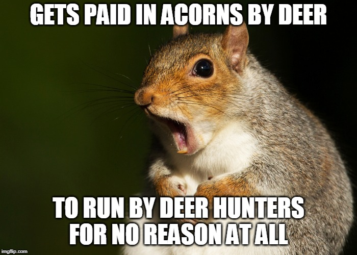 If I had a dollar for every time I thought I heard a deer coming... | GETS PAID IN ACORNS BY DEER TO RUN BY DEER HUNTERS FOR NO REASON AT ALL | image tagged in deer hunting,hunting season,hunting | made w/ Imgflip meme maker