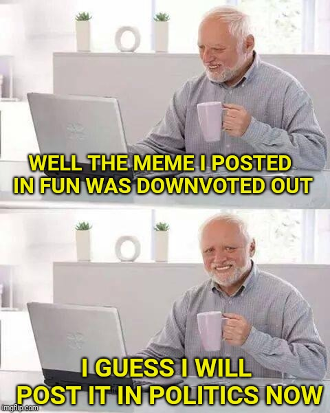 This actually just happened to me | WELL THE MEME I POSTED IN FUN WAS DOWNVOTED OUT I GUESS I WILL POST IT IN POLITICS NOW | image tagged in memes,hide the pain harold,first world imgflip problems,downvote | made w/ Imgflip meme maker