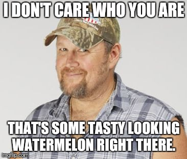 I DON'T CARE WHO YOU ARE THAT'S SOME TASTY LOOKING WATERMELON RIGHT THERE. | image tagged in memes,larry the cable guy | made w/ Imgflip meme maker