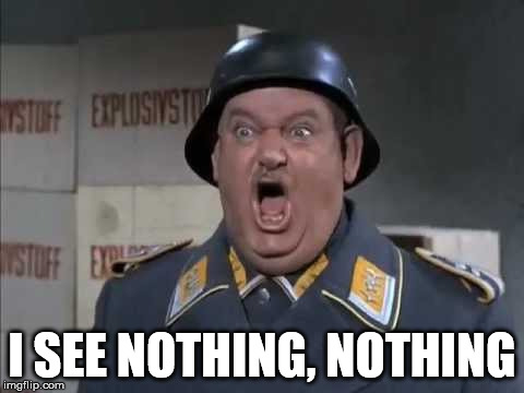 Sgt. Schultz shouting | I SEE NOTHING, NOTHING | image tagged in sgt schultz shouting | made w/ Imgflip meme maker