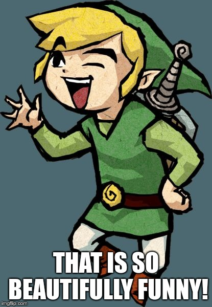 Link Laughing | THAT IS SO BEAUTIFULLY FUNNY! | image tagged in link laughing | made w/ Imgflip meme maker