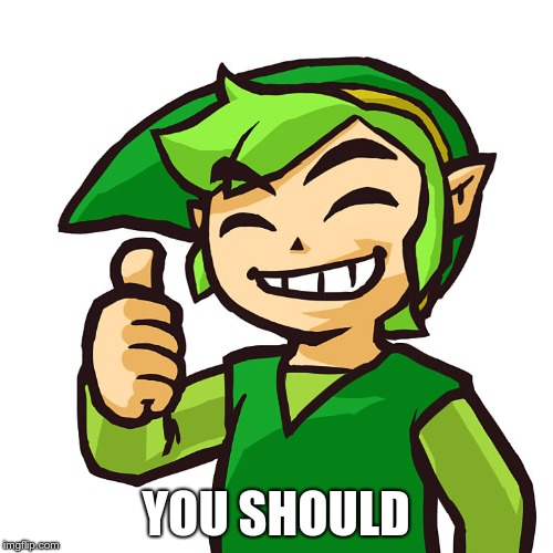Happy Link | YOU SHOULD | image tagged in happy link | made w/ Imgflip meme maker