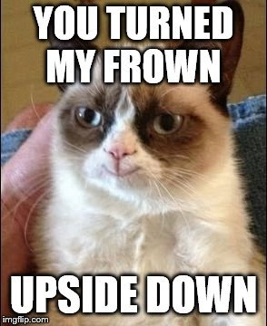 YOU TURNED MY FROWN UPSIDE DOWN | image tagged in grumpy cat smiling | made w/ Imgflip meme maker