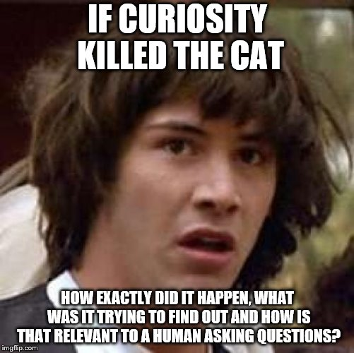 Conspiracy Keanu | IF CURIOSITY KILLED THE CAT HOW EXACTLY DID IT HAPPEN, WHAT WAS IT TRYING TO FIND OUT AND HOW IS THAT RELEVANT TO A HUMAN ASKING QUESTIONS? | image tagged in memes,conspiracy keanu | made w/ Imgflip meme maker