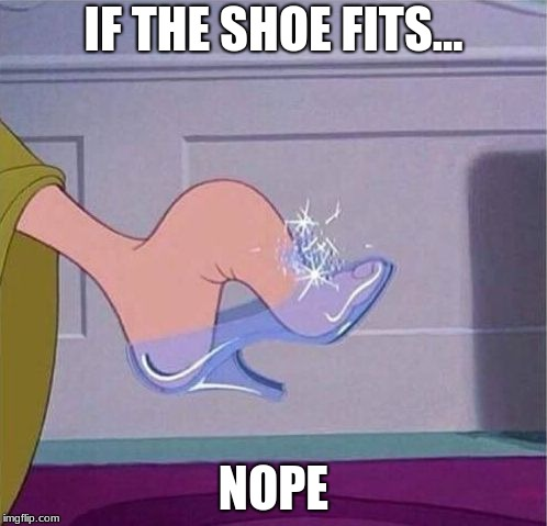 Cinderella shoe | IF THE SHOE FITS... NOPE | image tagged in cinderella shoe | made w/ Imgflip meme maker
