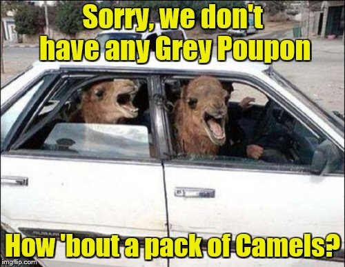 Quit Hatin |  Sorry, we don't have any Grey Poupon; How 'bout a pack of Camels? | image tagged in memes,quit hatin,camels,cigarettes,bad puns | made w/ Imgflip meme maker
