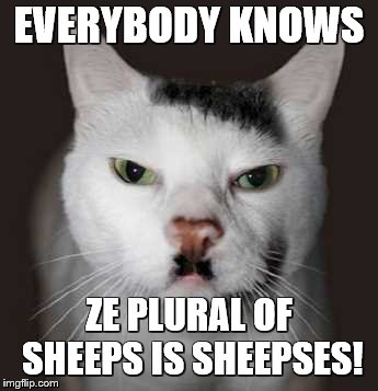 Nazi Cat | EVERYBODY KNOWS ZE PLURAL OF SHEEPS IS SHEEPSES! | image tagged in nazi cat | made w/ Imgflip meme maker