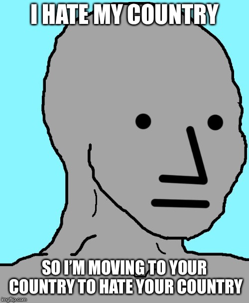 NPC | I HATE MY COUNTRY SO I'M MOVING TO YOUR COUNTRY TO HATE YOUR COUNTRY | image tagged in npc | made w/ Imgflip meme maker