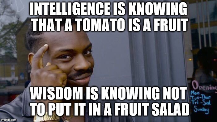 Roll Safe Think About It Meme | INTELLIGENCE IS KNOWING THAT A TOMATO IS A FRUIT WISDOM IS KNOWING NOT TO PUT IT IN A FRUIT SALAD | image tagged in memes,roll safe think about it | made w/ Imgflip meme maker