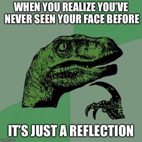 Have you ever thought of this | WHEN YOU REALIZE YOU'VE NEVER SEEN YOUR FACE BEFORE IT'S JUST A REFLECTION | image tagged in memes,philosoraptor,face,reflection | made w/ Imgflip meme maker