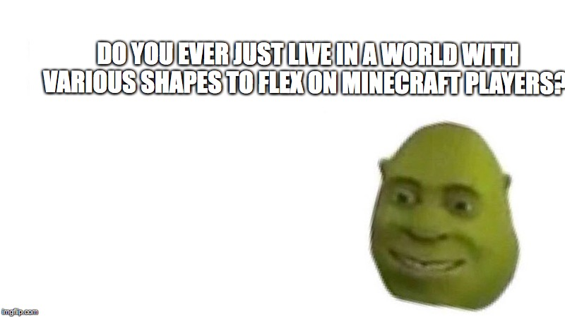 Shrek flex | DO YOU EVER JUST LIVE IN A WORLD WITH VARIOUS SHAPES TO FLEX ON MINECRAFT PLAYERS? | image tagged in shrek flex,scumbag | made w/ Imgflip meme maker