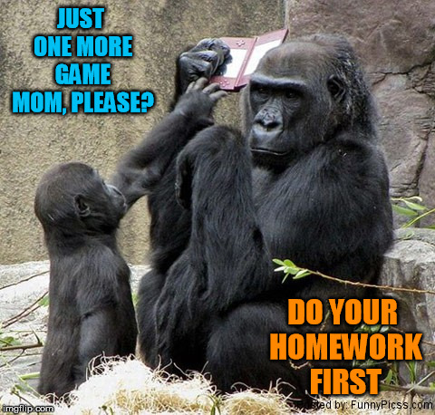Do your homework | JUST ONE MORE GAME MOM, PLEASE? DO YOUR HOMEWORK FIRST | image tagged in homework,funny animals,meme | made w/ Imgflip meme maker