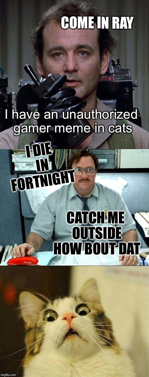 COME IN RAY I have an unauthorized gamer meme in cats I DIE IN FORTNIGHT CATCH ME OUTSIDE HOW BOUT DAT | made w/ Imgflip meme maker
