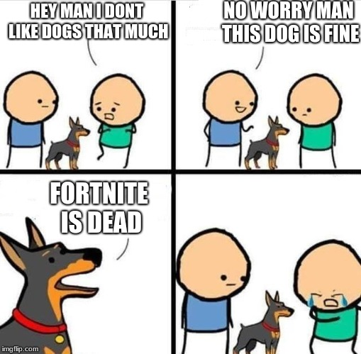 HEY MAN I DONT LIKE DOGS THAT MUCH NO WORRY MAN THIS DOG IS FINE FORTNITE IS DEAD | image tagged in dog hurt comic | made w/ Imgflip meme maker