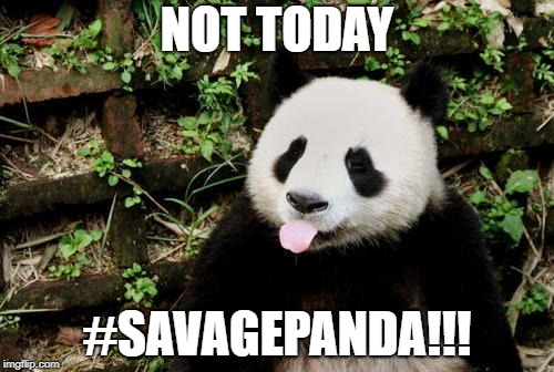 dude | NOT TODAY #SAVAGEPANDA!!! | image tagged in lol so funny | made w/ Imgflip meme maker