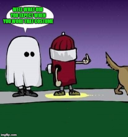 Choose those Halloween costumes carefully kiddies!!! | WELL WHAT DID YOU EXPECT WHEN YOU WORE THAT COSTUME | image tagged in fire hydrant,memes,halloween,peed on,funny,costumes | made w/ Imgflip meme maker