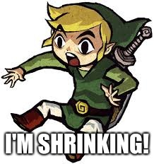 Shocked Link | I'M SHRINKING! | image tagged in shocked link | made w/ Imgflip meme maker
