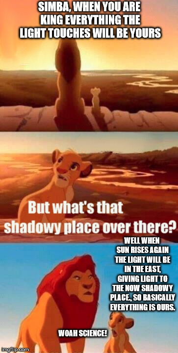 Please don't tell me nobodys ever thought of this while Re-watching the movie. | SIMBA, WHEN YOU ARE KING EVERYTHING THE LIGHT TOUCHES WILL BE YOURS WELL WHEN SUN RISES AGAIN THE LIGHT WILL BE IN THE EAST, GIVING LIGHT TO | image tagged in memes,simba shadowy place | made w/ Imgflip meme maker