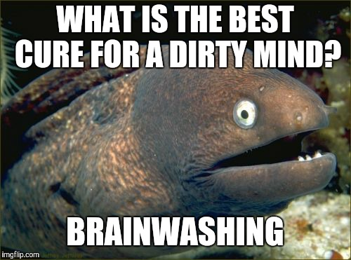 Illuminati, please don't come for me. | WHAT IS THE BEST CURE FOR A DIRTY MIND? BRAINWASHING | image tagged in memes,bad joke eel,dirty mind | made w/ Imgflip meme maker