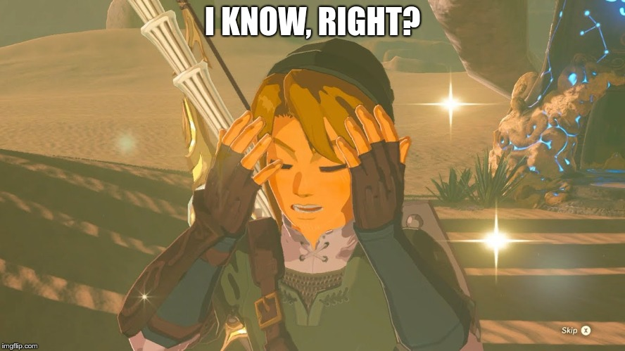 Link WTF | I KNOW, RIGHT? | image tagged in link wtf | made w/ Imgflip meme maker
