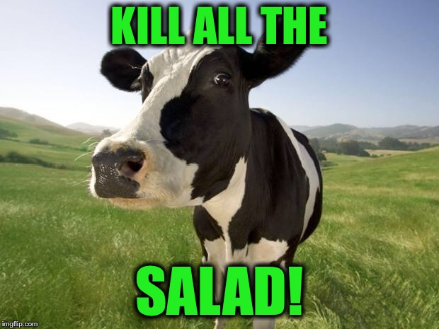 cow | KILL ALL THE SALAD! | image tagged in cow | made w/ Imgflip meme maker