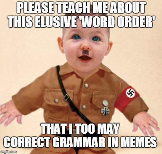 baby grammar Nazi  | PLEASE TEACH ME ABOUT THIS ELUSIVE 'WORD ORDER' THAT I TOO MAY CORRECT GRAMMAR IN MEMES | image tagged in baby grammar nazi | made w/ Imgflip meme maker