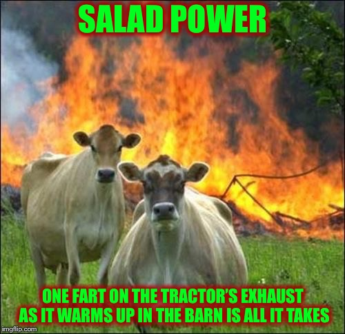Evil Cows Meme | SALAD POWER ONE FART ON THE TRACTOR'S EXHAUST AS IT WARMS UP IN THE BARN IS ALL IT TAKES | image tagged in memes,evil cows | made w/ Imgflip meme maker