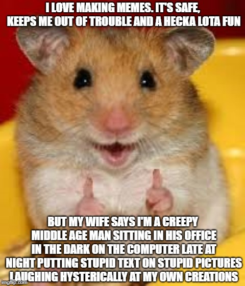 Thumbs up hamster  | I LOVE MAKING MEMES. IT'S SAFE, KEEPS ME OUT OF TROUBLE AND A HECKA LOTA FUN BUT MY WIFE SAYS I'M A CREEPY MIDDLE AGE MAN SITTING IN HIS OFF | image tagged in thumbs up hamster | made w/ Imgflip meme maker