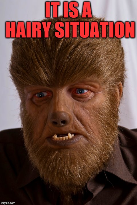 Hairy Situation  | IT IS A HAIRY SITUATION | image tagged in wolfman,hairy,monster,funny | made w/ Imgflip meme maker