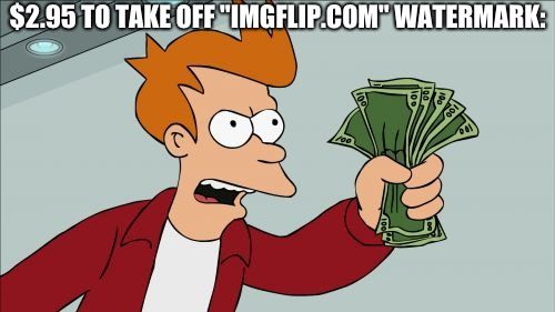 "Shut Up And Take My Money Fry | $2.95 TO TAKE OFF ""IMGFLIP.COM"" WATERMARK: 