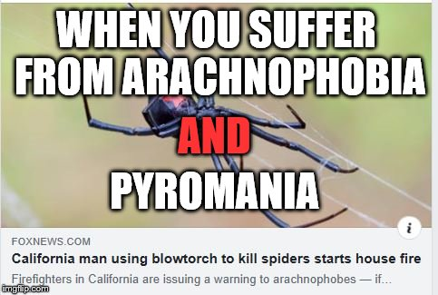 Using blowtorch to kill spiders | WHEN YOU SUFFER FROM ARACHNOPHOBIA AND PYROMANIA | image tagged in kill,spiders,arachnophobia,pyromania,blowtorch | made w/ Imgflip meme maker