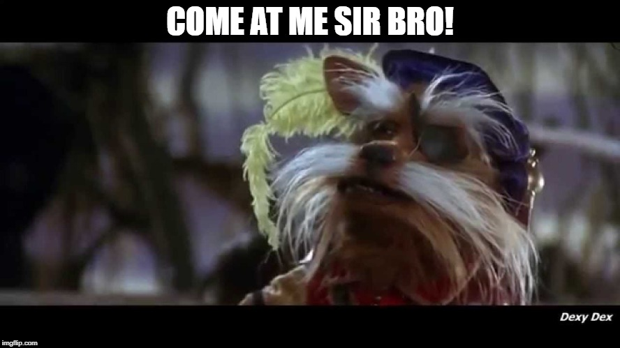 COME AT ME SIR BRO! | made w/ Imgflip meme maker